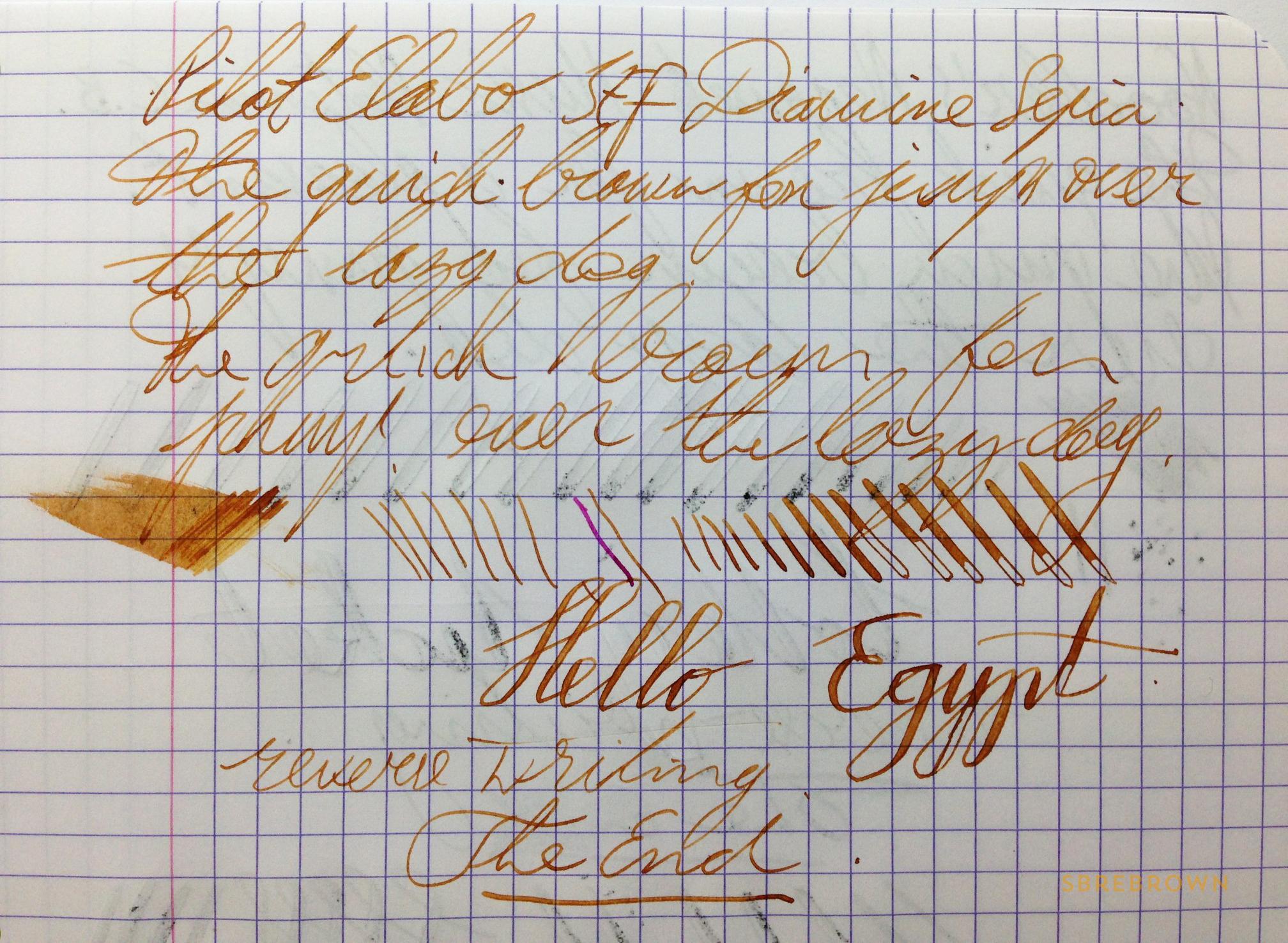 Pilot Elabo SEF Fountain Pen Review (1)