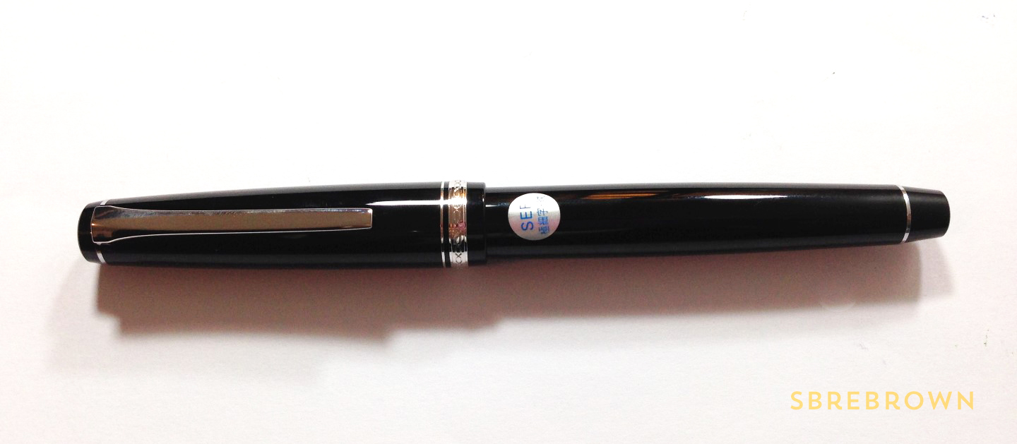 Pilot Elabo SEF Fountain Pen Review (3)