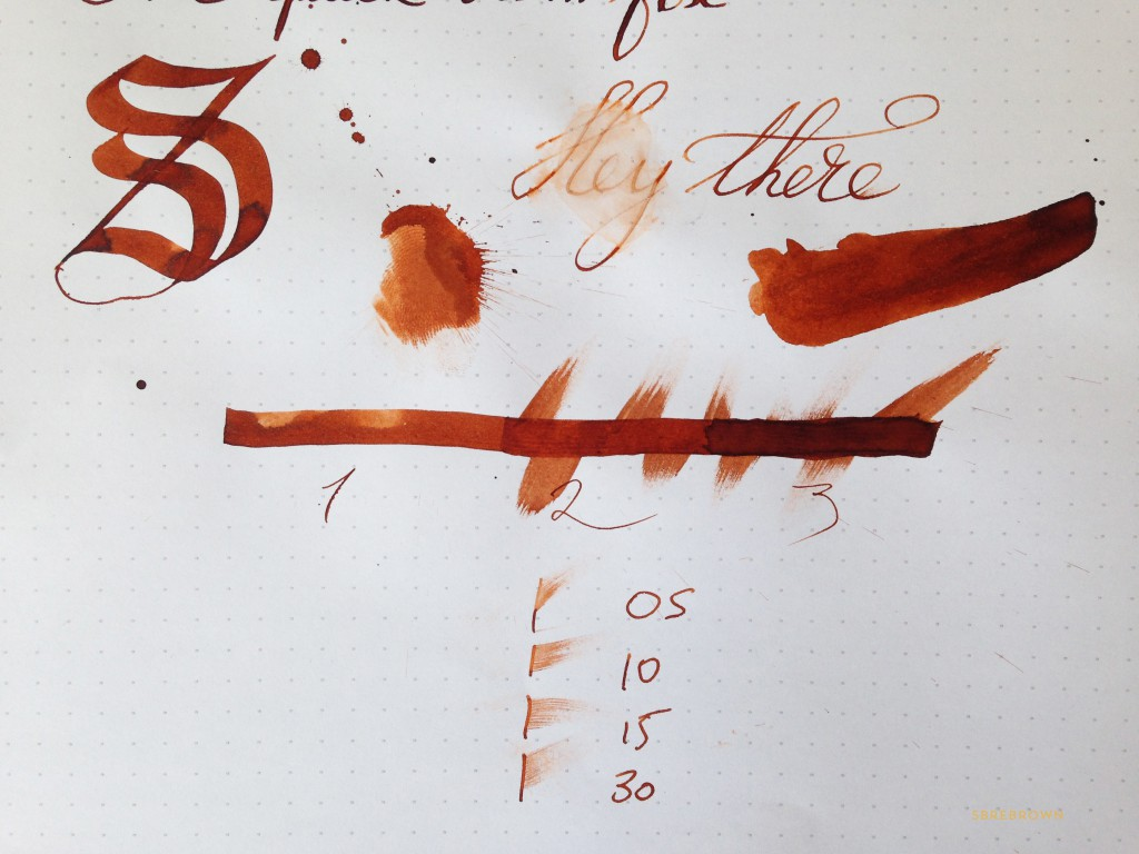 SB. SBREBrown Ink Review (3)