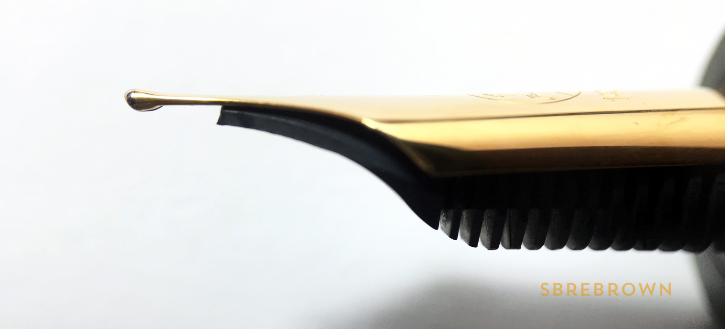 Eboya Kyouka Leafy Wind Large Fountain Pen Review